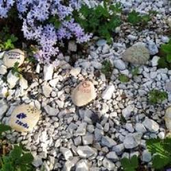 Malování kamenů 11.  5.2021